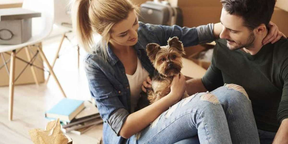 Has it changed and the pet is scared? Learn how to adapt the animals to the new home